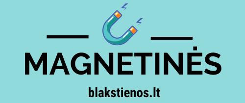Magnetinės Blakstienos